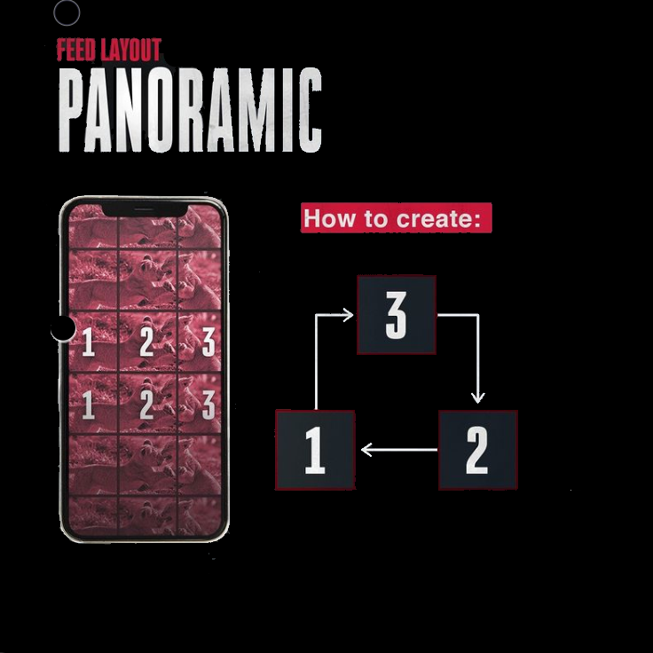 panoramic feed layout infographic