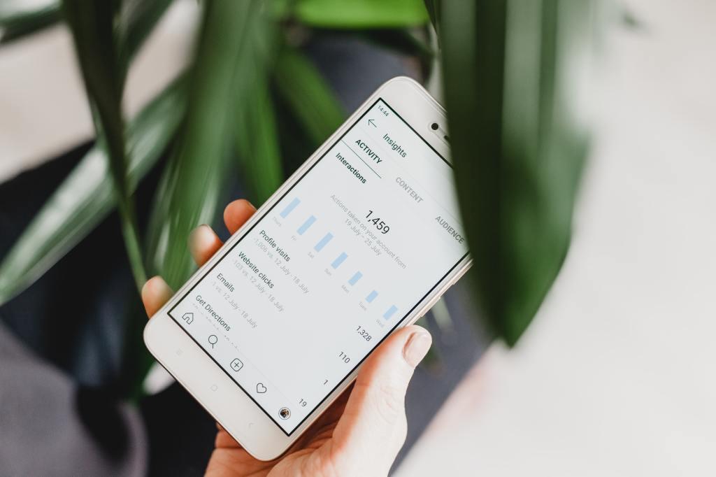 Instagram insights showing organci growth